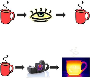 temrografia infrarossi - cosa vede una termocamera