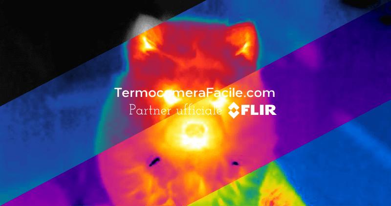 Scegliere la tavolozza dei colori nelle immagini termiche
